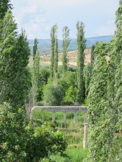 overgrown Agora - Aphrodisias, Turkey