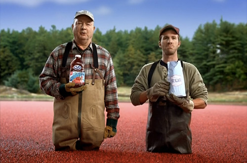 Ocean Spray ad - cranberry water harvesting