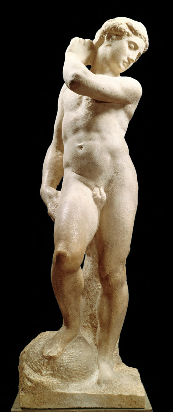 Michelangelo's David-Apollo