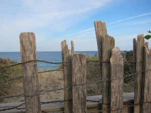 wood fence, Nauset Light Beach, Cape Cod