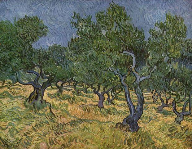 """Vincent van Gogh """"Olive Orchard"""" June 1889, Kröller-Müller Museum, Otterlo, Netherlands"""