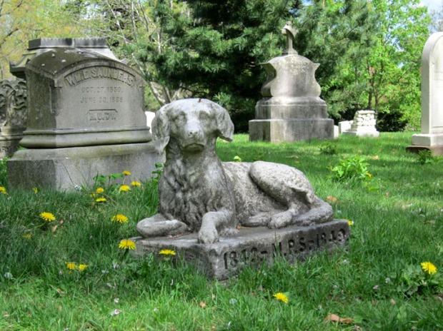 Dog gravestone, Mt. Auburn Cemetery