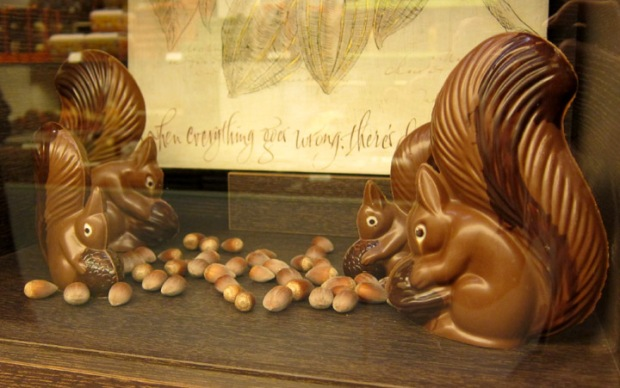chocolate squirrels with hazelnuts