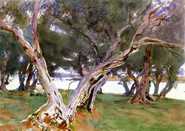 John singer sargent - olive trees, corfu