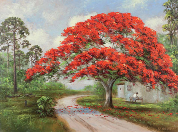 "R. A. ""Roy"" McLendon - ""Life Under the Royal Poinciana"""