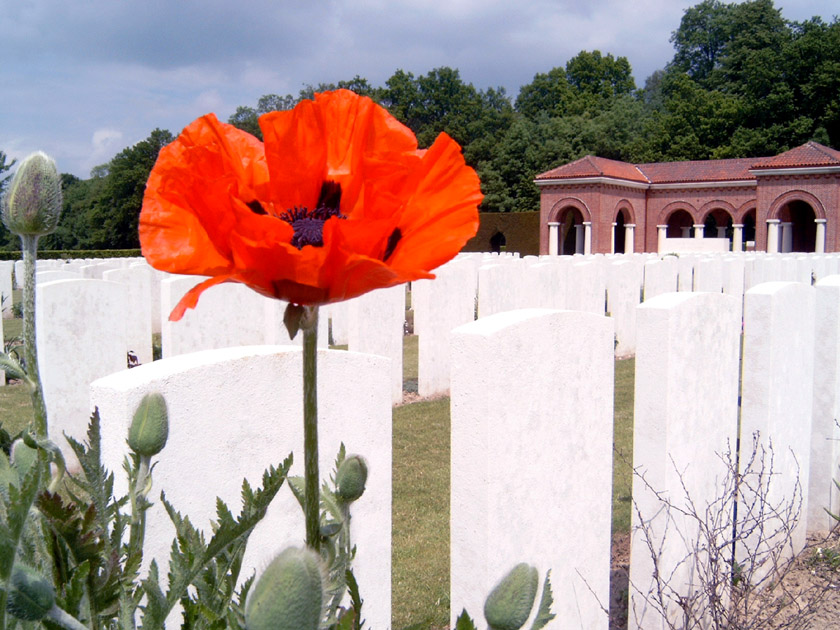 World War I, High Wood cemetery, France