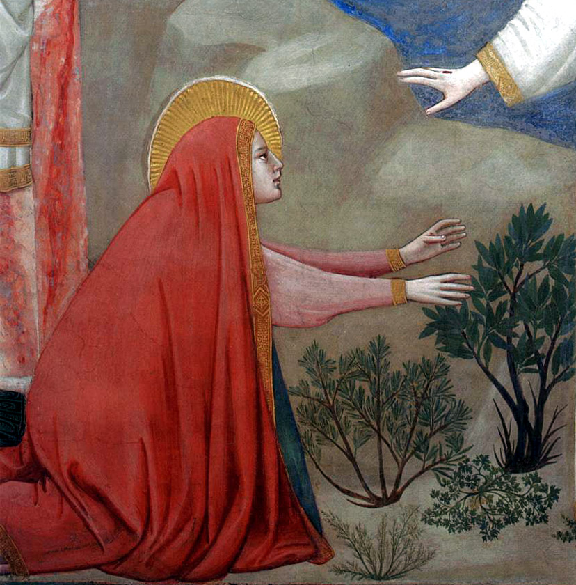 """Detail of Mary from Giotto di Bondone, """"Scenes from the Life of Christ: 21. Resurrection (Noli me tangere)"""", 1304-1306, Scrovegni Chapel, Padua"""